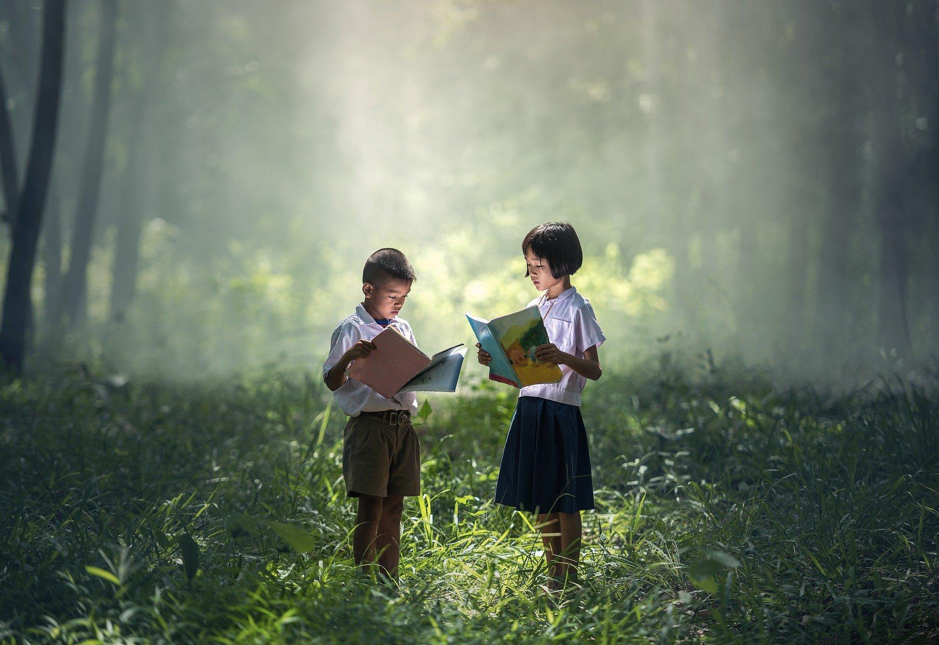 kinderen leren in bos